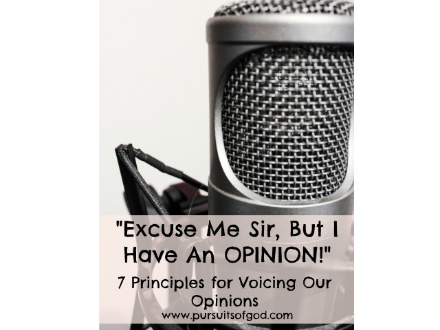 Excuse Me Sir, But I Have An Opinion: 7 Principles for Voicing Our Opinion