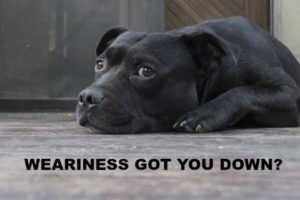 Weariness Got You Down?