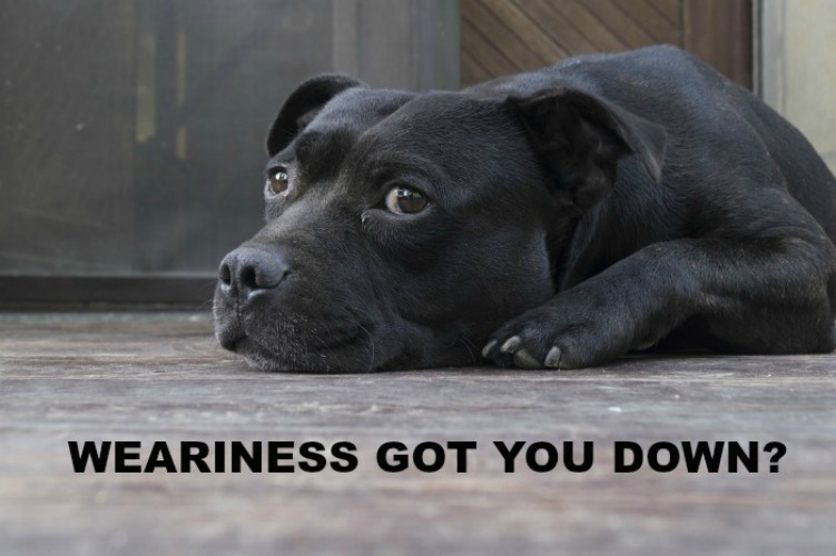 Weariness Got You Down?